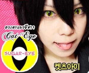 Cat Eye Yellow bigeye